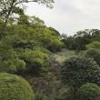三島 散策