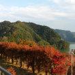 11/2高尾山~宮ヶ瀬行ってきました