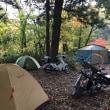 キャンプツーリング in 道志の森
