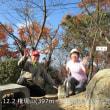 2 権現山・阿武山(397・586m:安佐南区)登山  「権現山」山頂到着
