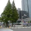 今日は、堺市役所の販売日