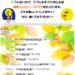 9月のイベント出店案内~(^▽^)/