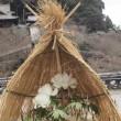 長谷寺・本坊に咲く冬牡丹 奈良県桜井市