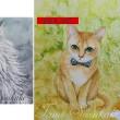 水彩・原画「つぶらな瞳の猫・シンガプーラ」「凛々しい猫・メインクーン」お買い上げいただきました。