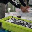 Fishing Acceleratorが技術成果を発表  スペイン