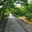 (4K)2013年・濃緑の京都壁紙その2(計10枚)