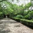 潮来 長勝禅寺を訪ねて