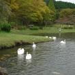 平成29年10月18日(水)