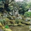 日本庭園の中の「石景の妙」