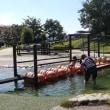 山梨 石和温泉へ3 フルーツ公園