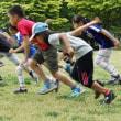 子ども向けの走り方教室が増えていると聞き・・・ /  憂楽帳