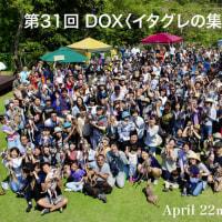 10/28(日)は第32回 DOX<イタグレの集い & 徒競走>!