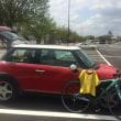 2.3年分桜を堪能したサイクリングでした。