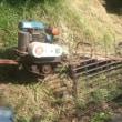 今日も 草刈りへ。