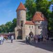 2018.05.25 エストニア タリン 旧市街: 賑わうヴィル門