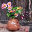 秋の畑の花・実を楽しむ