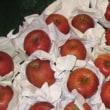 娘家族の愛のしるし・・・『包装されたりんご』 そして 神の愛のしるし・・・『十字架』