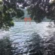箱根神社の「龍神あんぱん」