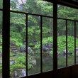 """雨の""""香雪園""""..."""