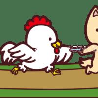 龍本部道場朝クラス 2017/12/22(金)稽古日誌