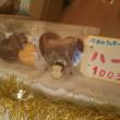 くまさんのぼうけん2/5  シフォンケーキとクッキーのうさぎとみかん