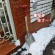 雪かき完了♪
