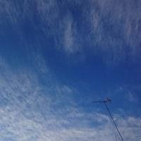 【早朝のお散歩】 18/12/11 今朝も厳しい寒さです