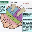 アルツハイマー型認知症の「脳の働き」と「症状」との関係 Q/A Room (A-48)