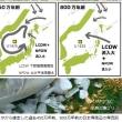 豊かな日本海は、いつできた?約450万年前に太平洋とたもとを分かった