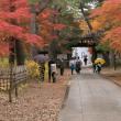 秋色の境内