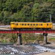 久しぶりに見た黄色の日南線の列車 (Photo No.14244)