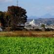 遠くに川浦富士