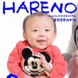 NEWメニュー♫ 撮り放題データ90分 ¥20000 札幌格安写真館ハレノヒ