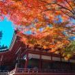 11月6日 比叡山延暦寺①