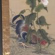 南蘋派もいろいろ/江戸の花鳥画(板橋区立美術館)