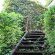 夏の13階段