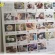 No.2568☆ゆきたん☆誕生日 最後の365カレンダー