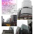 散策 「東京中心部南 318 スカイバス 皇居・銀座・丸の内コース なんと雨の中