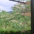 7月2日トリシティで朝練 7月4日台風対策