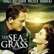 エリア・カザンもまた西部劇を撮る:『大草原』