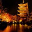 京都紅葉シリーズ:雨の東寺ライトアップ