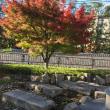 健康講演会と庭園見学会