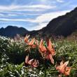 夏のくじゅう連山からp2(D810、18-35mm)