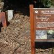 筑波山麓の観察会は古道歩き