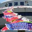 最後の鯉のぼり~海洋館