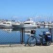 積丹美国 自転車キャンプツーリング ①