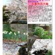 埼玉-605  久喜市西大輪
