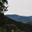小松山の山頂がとても近くに見えています。 (Photo No.14164)