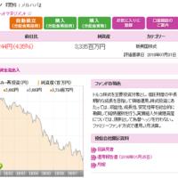 【8月第2週のハイ&ロー】桃田選手おめでとう!&トルコリラ暴落
