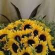 向日葵の花束💐